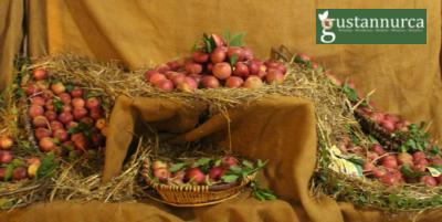 MelaDay il 24 novembre a San Mango Piemonte